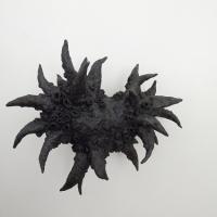 N º 1 da série Nudibranch